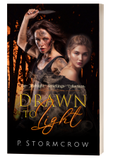 single-book-DrawnByLight